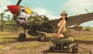 P-40N Warhawk by Romain Hugault - Limited - in scale 1-32