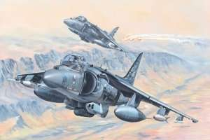 AV-8B Harrier II in scale 1-18