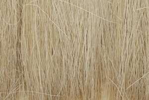Woodland FG171 Trzcina - Natural Straw