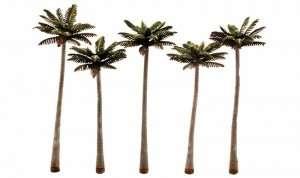 Palm Trees Woodland TR3598