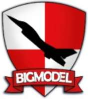 Big Model