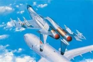 Hobby Boss 81715 PLA J-11B (Su-27)