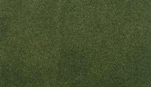 Mata trawiasta - Forest Grass - Woodland RG5143