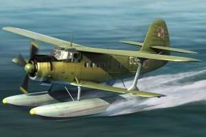 Model Antonov AN-2W Colt Hobby Boss 81706