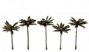 Woodland TR3597 Drzewa - palmy 5 szt