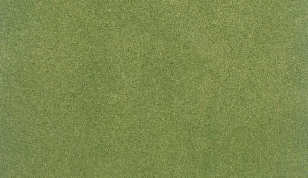 Mata trawiasta - Spring Grass - Woodland RG5171
