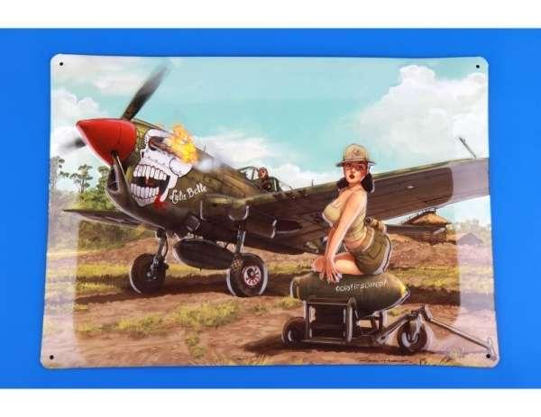 eduard_11104_p_40n_warhawk_hobby_shop_modeledo_image_16-image_Eduard_11104_2