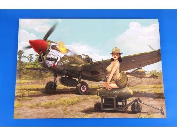 eduard_11104_p_40n_warhawk_hobby_shop_modeledo_image_17-image_Eduard_11104_2